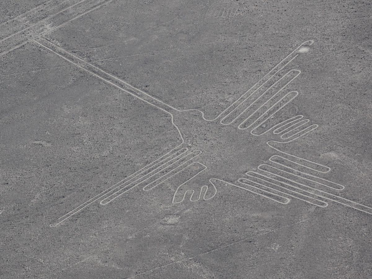 ナスカの地上絵の画像 p1_39