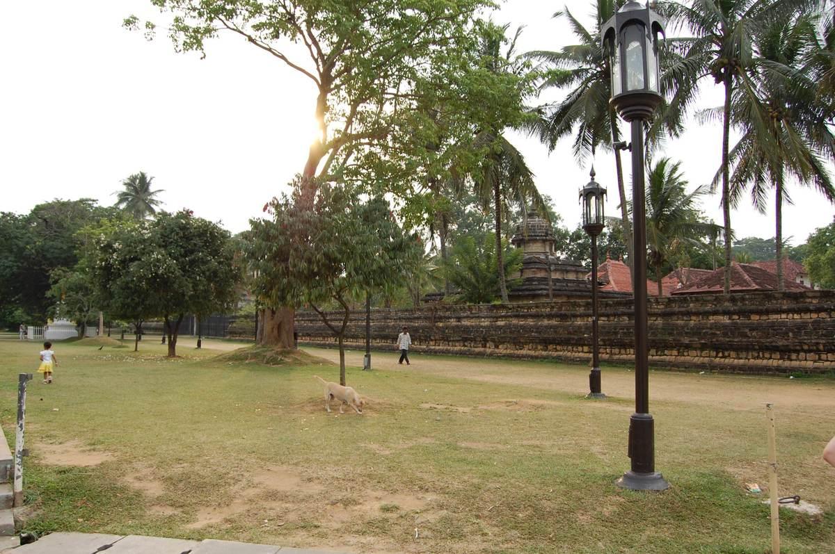 20115surilanka_927