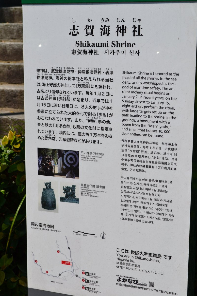 20119tsukushi_016