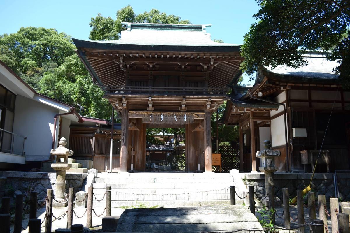 20119tsukushi_030