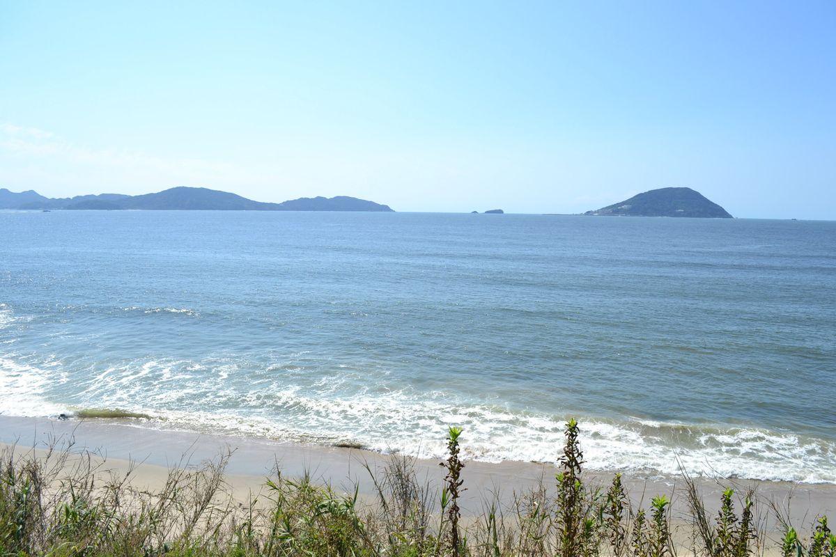 20119tsukushi_097