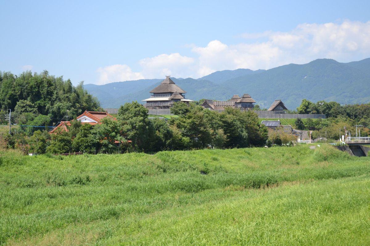 20119tsukushi_245