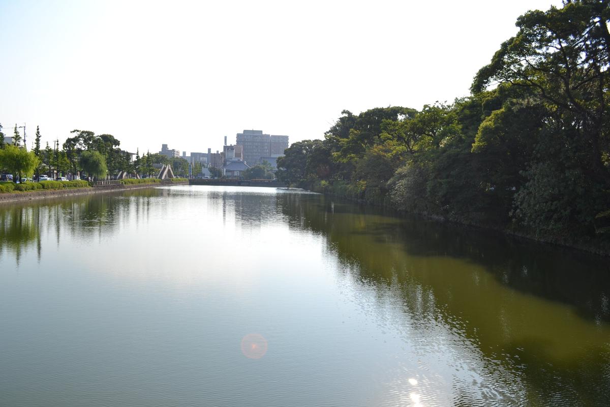 20119tsukushi_333