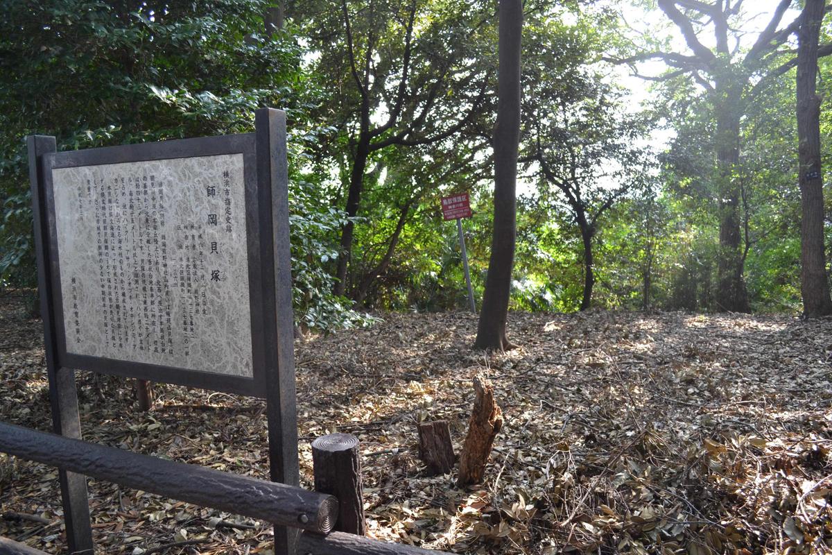 201110ookurayama_168