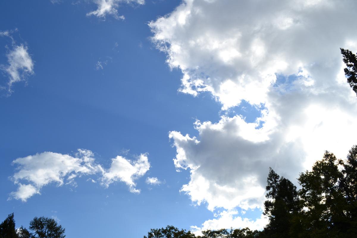 201110akatonbo_268