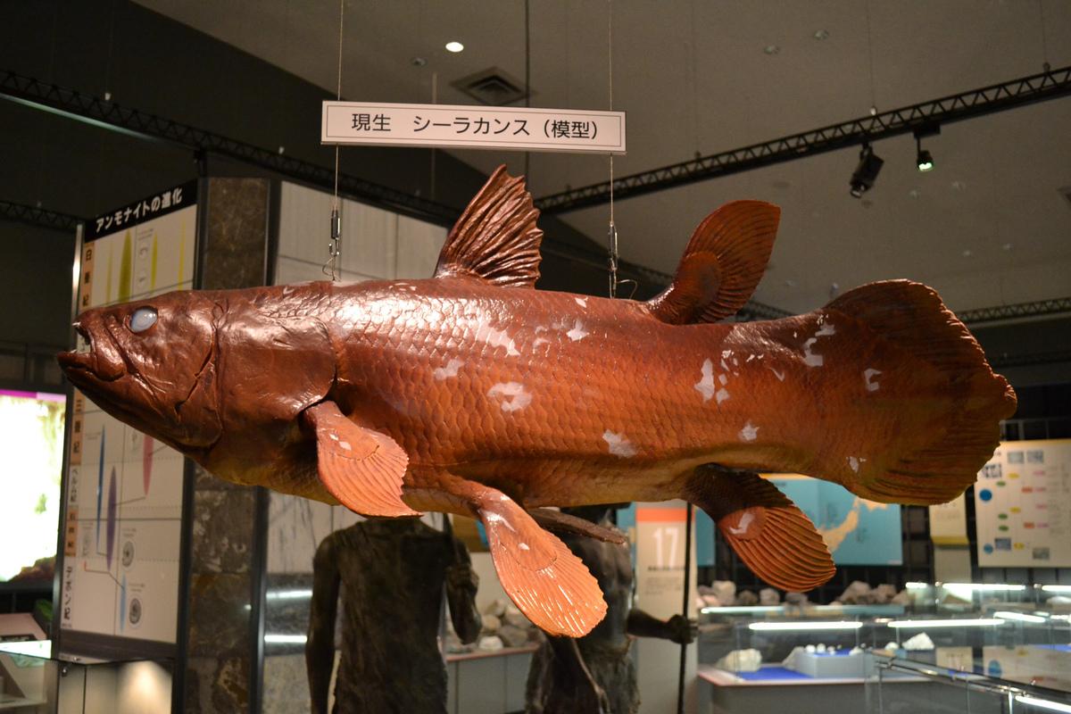 201110akatonbo_192