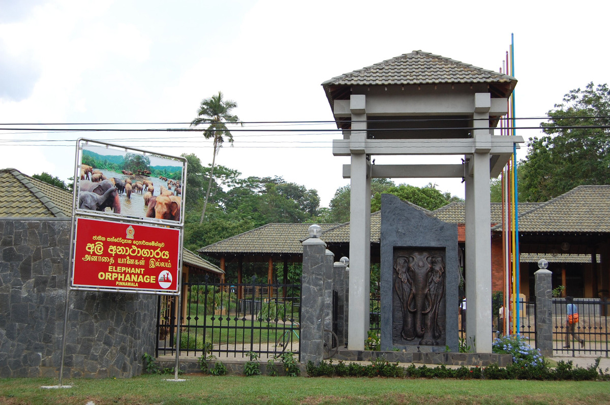 20115surilanka_1275