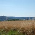 遥かヴェズレーの丘が見える
