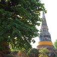 仏塔の腰には袈裟が