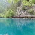 九寨溝 熊猫海 湖畔遊歩道