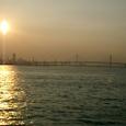 東京湾から遠望